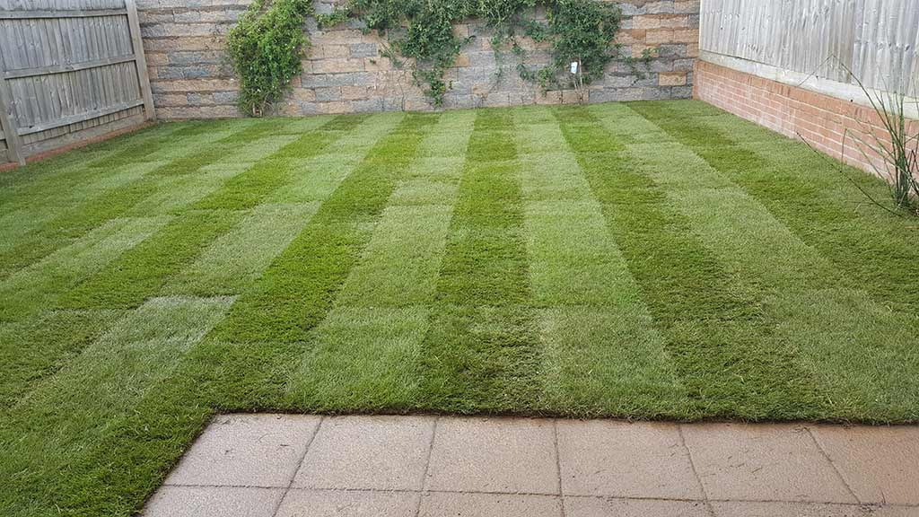 Turfing Work Example - After